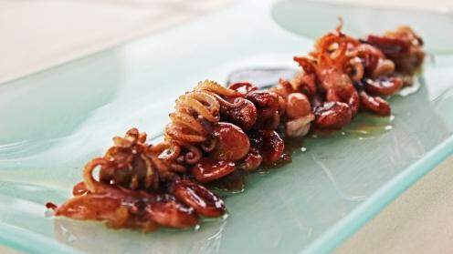 BabyOctopus