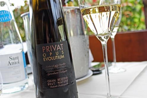 PrivateOpusEvolutium